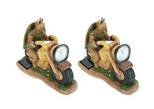 Aspen Creative 60901 Two Pack Set, Turtle on a Motorcycle Solar LED Accent Light