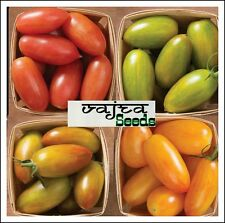 Tomato Seeds☆Combo Pack 4 Variety Mixed Heirloom Vegetable Seeds ☆200☆Pcs Packet