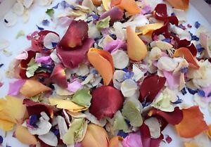 Real-Petale-naturel-Biodegradable-Mariage-Confettis-eco-Summer-Orange-Rainbow