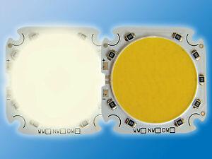 POWER LED | 44x44mm | Neutral Weiß | 4000K | Direktbetrieb an 12VDC