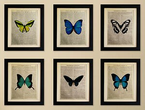 SET-OF-6-ART-PRINTS-ON-OLD-ANTIQUE-BOOK-PAGE-Butterflies-Vintage-Upcycled