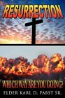 Resurrection 9781434372468 by Karl D. Pabst SR Book