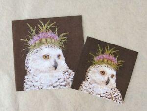 Vicki Sawyer Owl Family Bird Luncheon Napkins Sale!