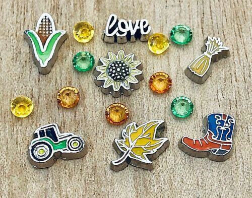 Floating Charms Farm Country Sunflower Tractor Corn fit Origami Memory Locket