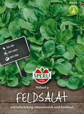 "Sperli - Feldsalat "" Volhart 3 "" wächst schnell, frosthart, viele Vitamine 82668"