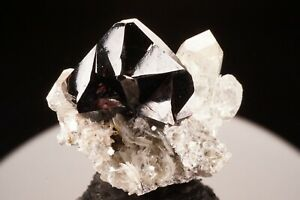 SUPERB-Cassiterite-Crystal-Twin-with-Goshenite-Beryl-SHUIJING-CHINE-Ex-Jensen
