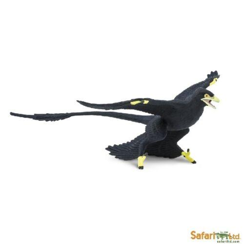 Microraptor 17 cm Serie Dinosaurier Safari Ltd 304129               Neuheit 2017