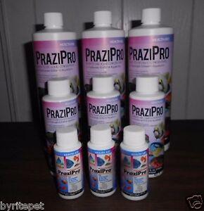 Pond-or-Aquarium-PraziPro-1oz-4oz-16oz-Gallon-QUANTITY-PRICING-LOOK-INSIDE