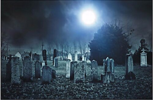 Haunted Cemetery Backdrop Banner Props Halloween NEW Haunted House Decor