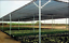 EasyShade 50/% Black Shade Cloth Taped Edge with Grommets UV 24ft Wide