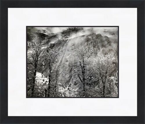 Ansel Adams Trees and Cliffs of Eagle Peak Custom Gallery Framed FREE SHIPPING
