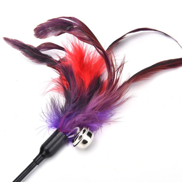 Cat Kitten Feather Teaser Rod Wand Flexible Fun Toy Long 65CM/25.6INCH IAFLN