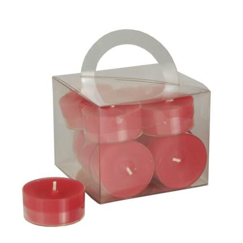 12 Stück verschiedene Farben Teelicht mit transparenter Hülse