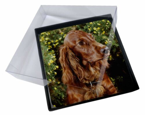 AD-RS1C 4x Irish Red Setter Dog Picture Table Coasters Set in Gift Box