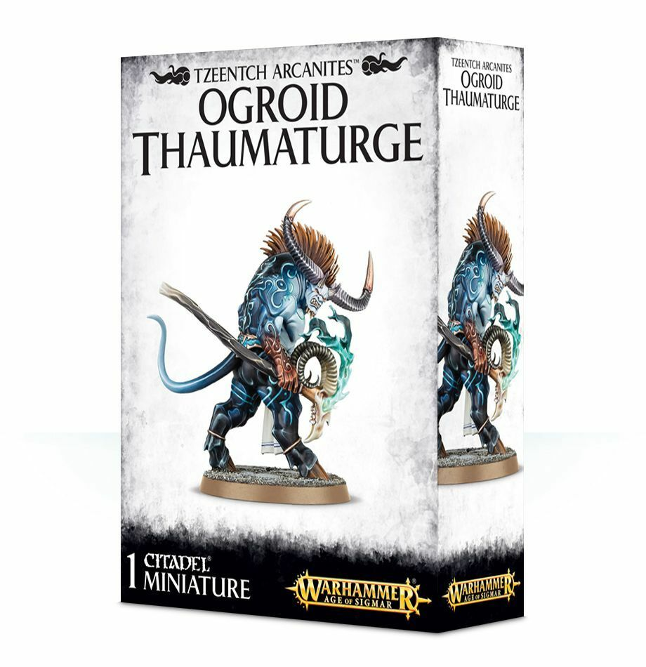 Warhammer Age of Sigmar  Ogroid Thaumaturge GW 83-77 NIB