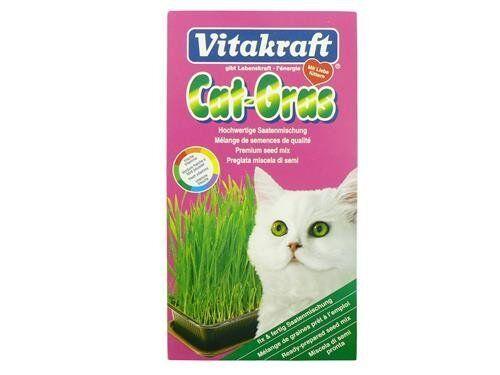 VITAKRAFT gatto Erba INTERNI 120g (confezione da 6)