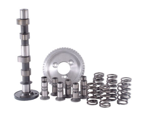 VW VOLKSWAGEN All Air-Cooled Type 1 /& Type 2 Engines SCAT C25 Cam Kit