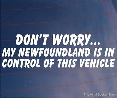DON'T WORRY MY NEWFOUNDLAND IS IN CONTROL OF THIS VEHICLE Car/Van Dog Sticker