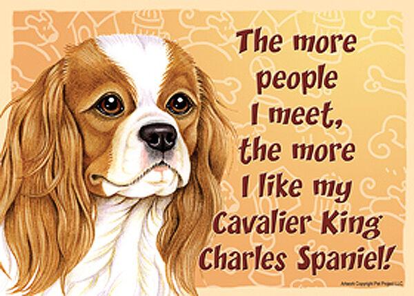 Cavalier King Charles Dog Sign Wall Plaque Magnet Hook & Loop Fastener 5x7 - ...