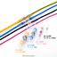 200pcs Solder Sleeve Heat Shrink Butt Wire Splice Connector Waterproof 26-10 AWG