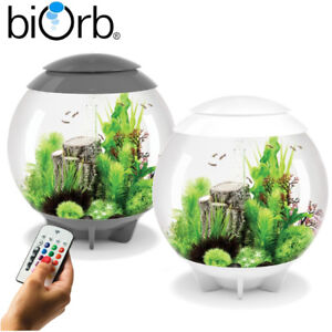 Aquariums & Tanks Fish & Aquariums Active Oase Biorb Halo 60 Aquarium Fish Tank Mcr Led Lighting Filter Grey White 60l Pleasant In After-Taste