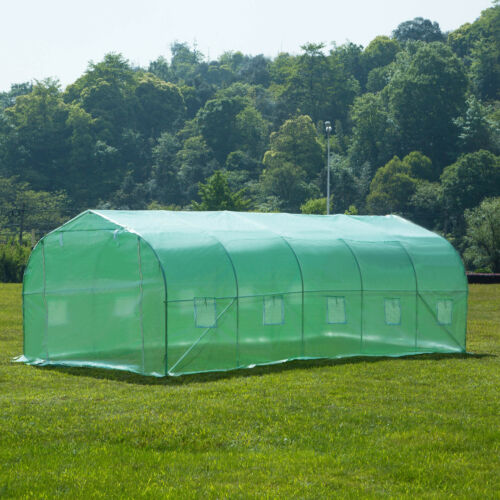 20/'x10/'x7/' Larger Hot Green House Walk-In Greenhouse Plant Outdoor Gardening