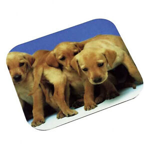 3M Labrador Puppies Optical Mouse Pad 21200530289