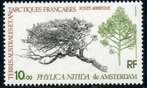 TIMBRE-T-A-A-F-TERRES-AUSTRALES-NEUF-PA-N-60-FLORE-COTE-6-10