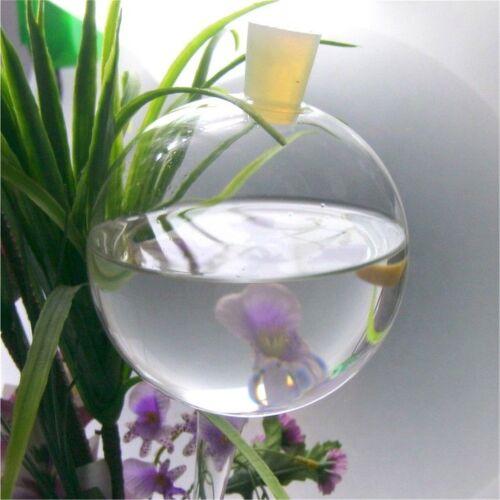 Mega große Durstkugel Bewässerungskugel mit Verschluß Durstkugeln Top Qualität