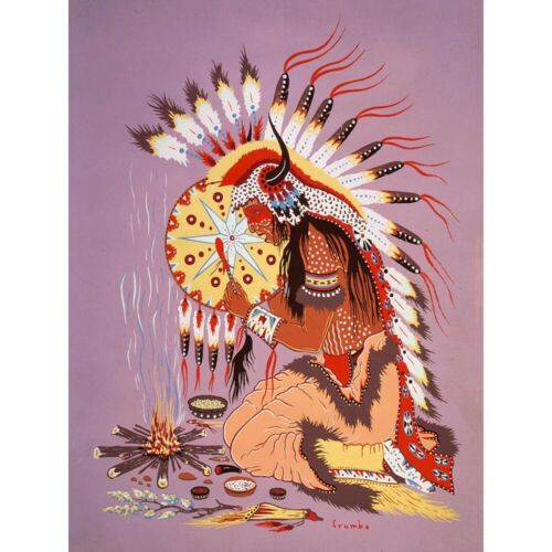 Painting Native American Indian Shaman Fire Feather Spirit 12X16 Framed Print