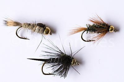18 Gold Head Olive /& Black Nymphs Trout Fly Fishing Flies  by Dragonflies