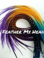 Feather Hair Extensions Multi Color Rainbow, Long, Premium Whiting Eurohackle