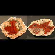 RED DRAGON PAIR, Baker Ranch 151g & St.Egidien 71g, one side polished geodes