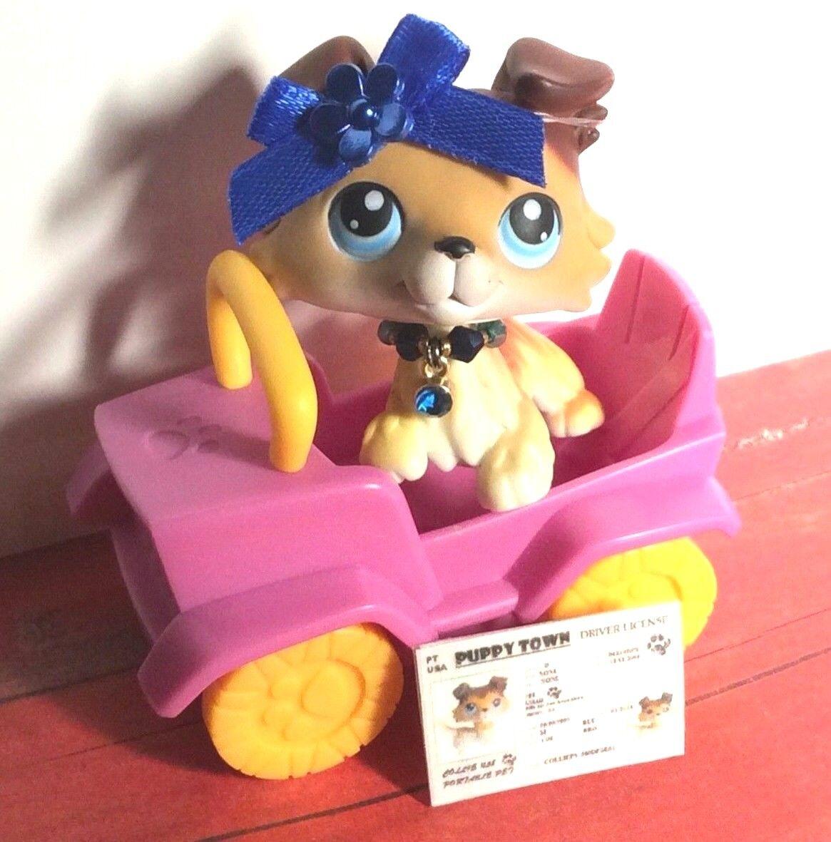 Littlest Littlest Littlest Pet Shop   SAGE BROWN & WHITE COLLIE DOG Accessories - Rare  7091ce