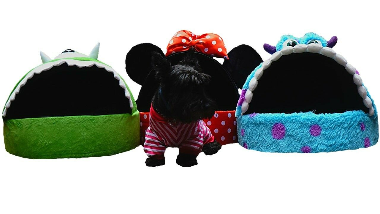 House House House dog cat bed sesame cartoon pet funny pillow character Elmo puppy figure 658325