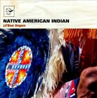 Air Mail Music: Native American Indian * by Lil' Bear Singers (CD, Sep-2011, Air Mail Music)