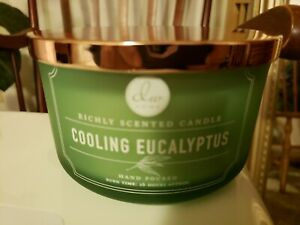 NEW DW Home Cooling Eucalyptus Large 3 Wick Dish Candle burns 26 hours NEW! RARE