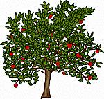 Fruit Ridge Tools LLC
