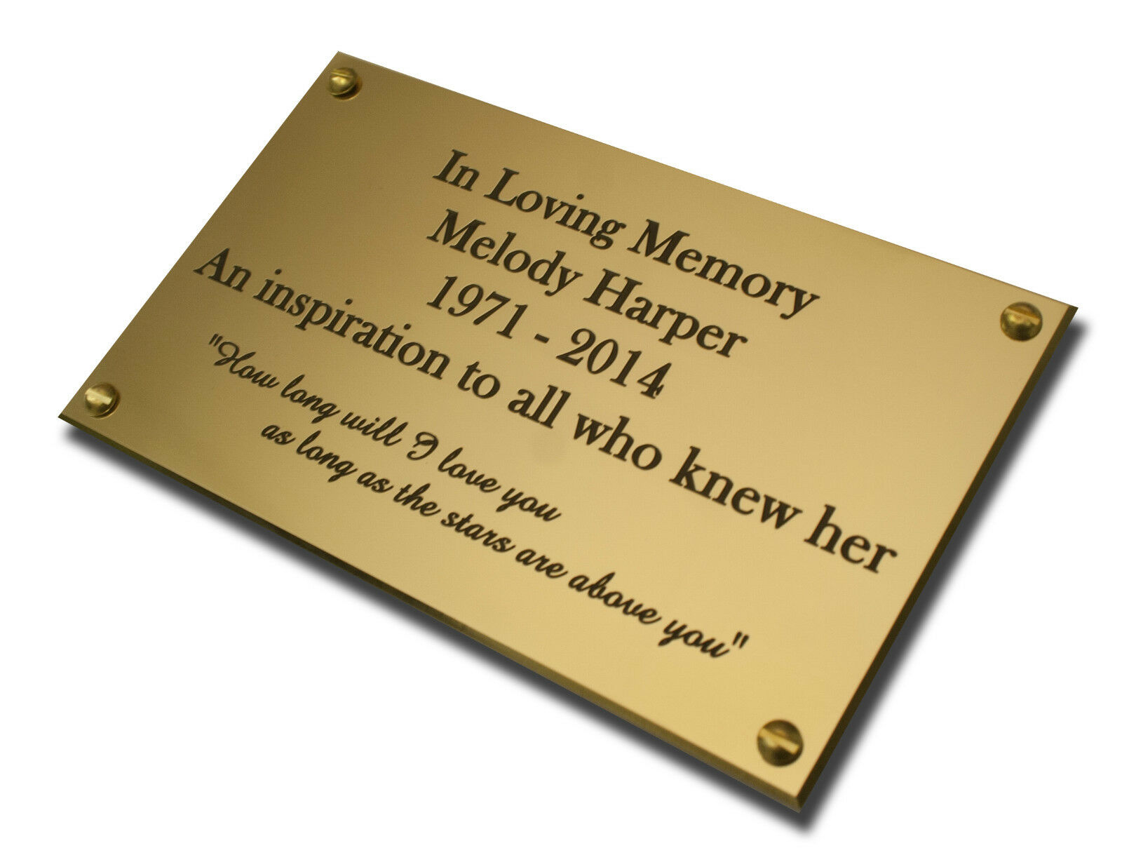 Deep Engraved Brass Name Plate Plaque Black Infill 50x20x1.5mm with or no holes