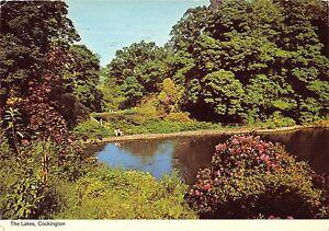 BR83101-the-lakes-cockington-uk