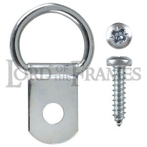 50-x-Single-D-Rings-amp-Screws-Picture-Frame-Framing-Photo-Canvas-Hanging-DRings