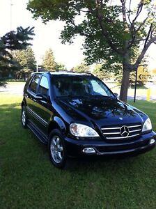 Mercedes ml 500 2003