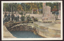 1920's DENVER CO SEA LIONS IN CITY PARK ZOO OLD UNUSED POSTCARD PC6296