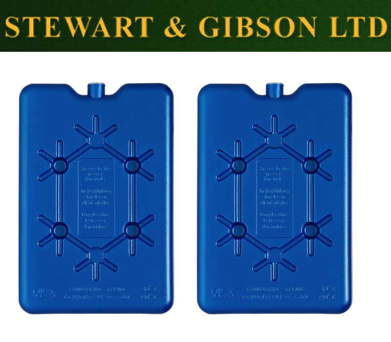 2 x Twin Pack Thermos Thermos Thermos 400 g Ice Pack Freeze Board cool Sacs de voyage Lunch boxes c2635b