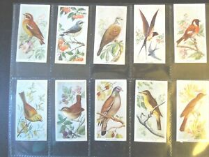 1939-Carreras-BIRDS-OF-THE-COUNTRYSIDE-complete-set-50-Tobacco-Cigarette-cards