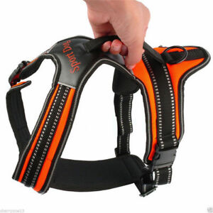 heavy duty padded pet dog harness xl large medium small strap vest walk out led ebay. Black Bedroom Furniture Sets. Home Design Ideas