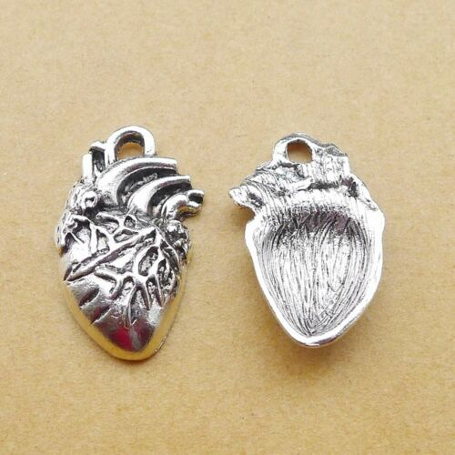 2 Human Heart Charms Silver Anatomy Pendants Organ Jewelry Findings 27mm