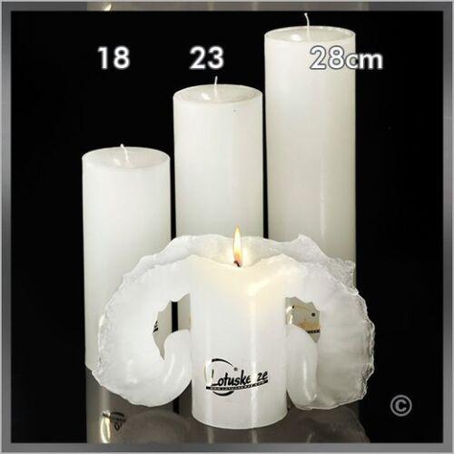 Lotus Bougie 23 cm Blanc uc: 3 pièces