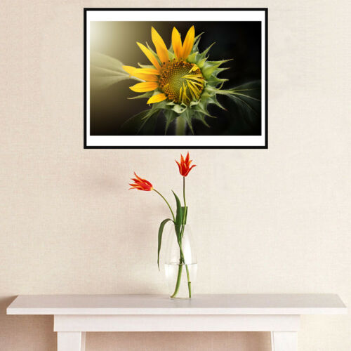Flowers Canvas Art Painting Poster Living Room Picture Wall Decor