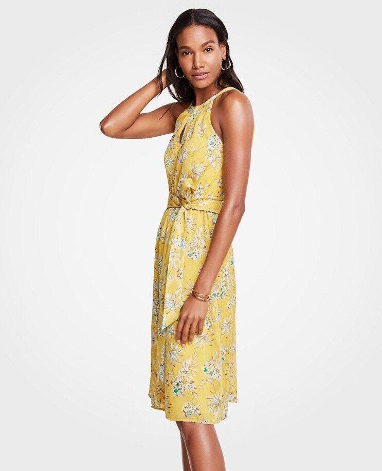 NWT Ann Taylor Tropical Toile Tie Waist Flare Dress 14   159 Yellow  New